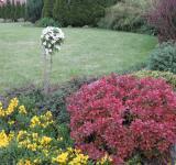Realizace - rodinná zahrada