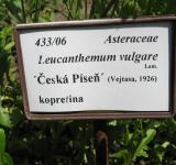 Informační cedulka k České písni