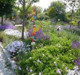 Zahrada laděná do odstínů modré